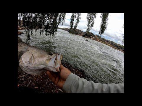 Ord River Rock Bar Barramundi Fishing Go Pro 7