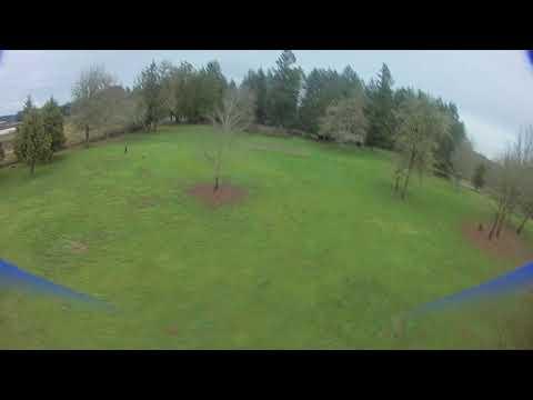Leisure flight at Shaffer Park