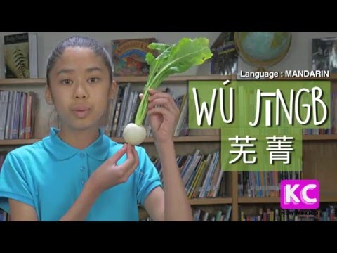 Can We Use Food To Learn And Understand Different Cultures