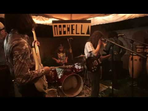 The Naacals - Sandoz Fever LIVE at Nochella
