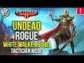 Divinity Original Sin 2: Undead Rogue Gameplay Part 1 - Fane The Night King - White Walker Build