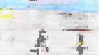 Projecto Lourdes Afonso-2.wmv