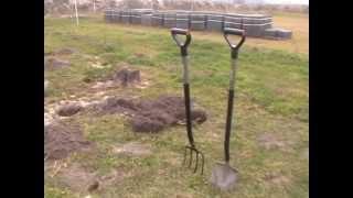 Praca w ogrodzie - Aronia sadzenie - Ecoeurope.eu