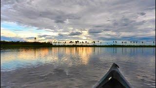 Recuerdos del Pantanal