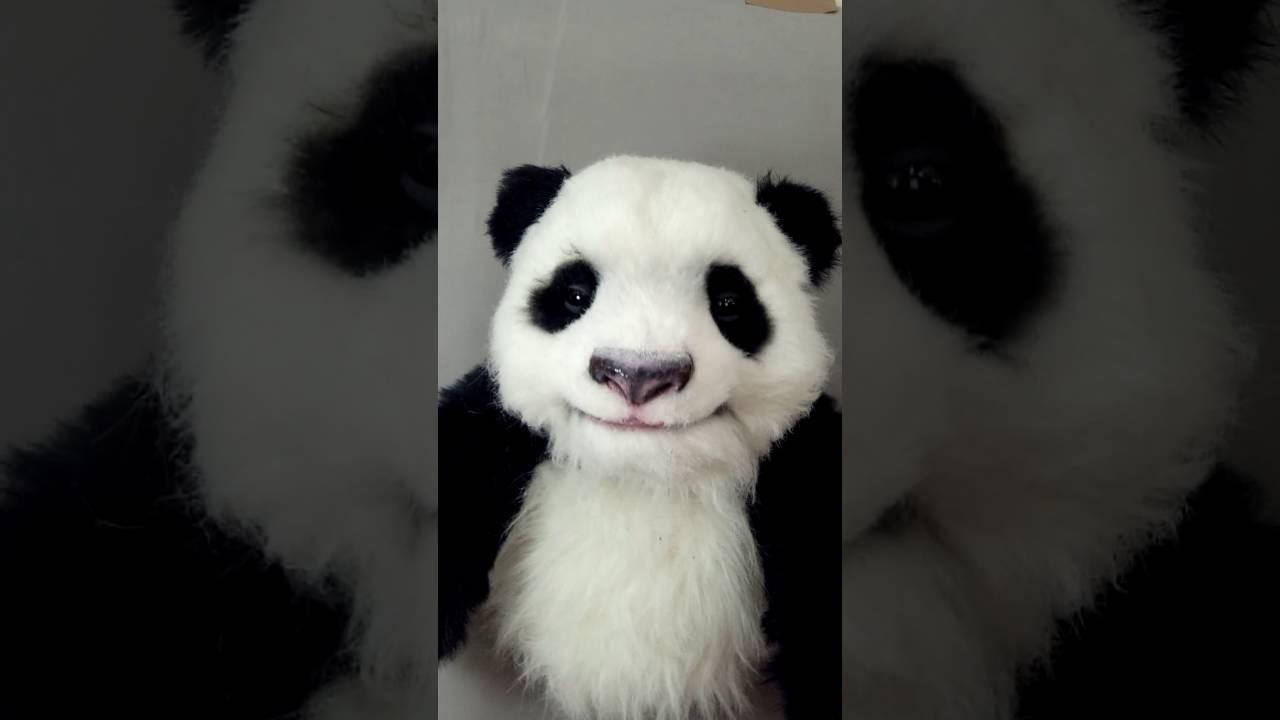 2016魔人社小熊貓手偶 mostudio Baby panda hand puppet