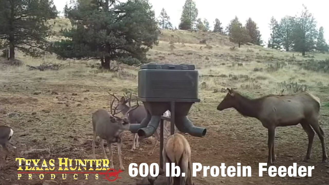 stand deer fill homemade feeder and products asf protein broadcast feeders