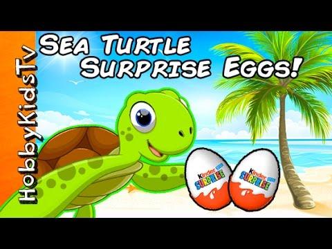 Sea Turtle Beach Surprise! Real Sea Turtles w/ Kinder Eggs by HobbyKidsTV