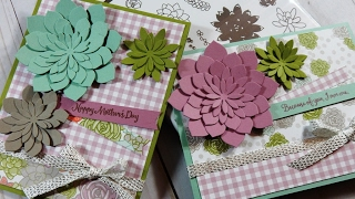 Oh So Succulent Suite Mini Series | Day 2 | Occasions Catalog 2017