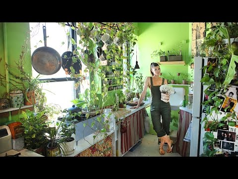 Growing A Jungle In My New York Apartment: MAKING MAD