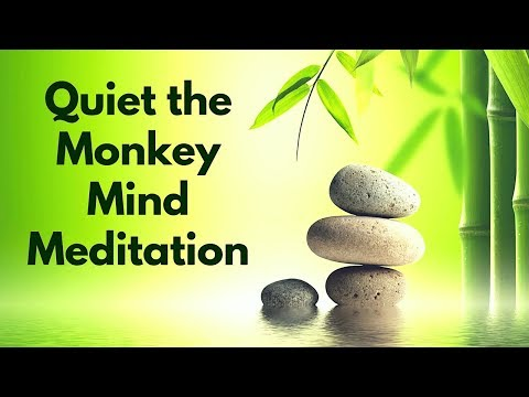 Guided Meditation to Quiet and Tame the Monkey Mind