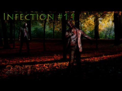 2017 - Infection #11