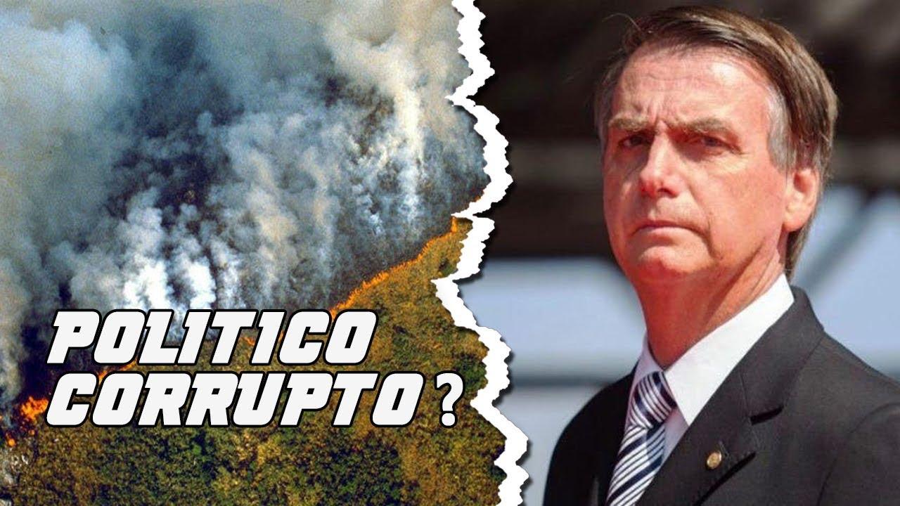 Gran incendio en el Amazonas 2019 conoce la verdad de esto