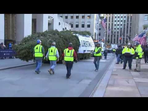 rockefeller-center-christmas-tree-arrives-at-the-plaza