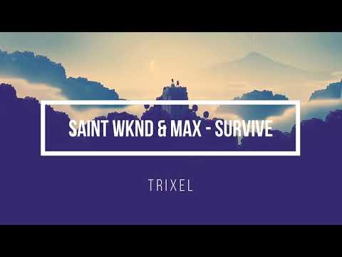 SAINT WKND & MAX - Survive