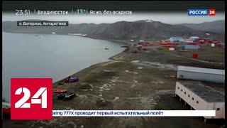 200 лет назад началась гонка за Антарктиду - Россия 24
