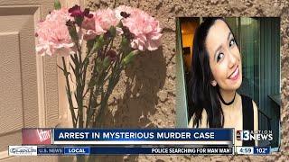 Arrest made in mysterious murder case