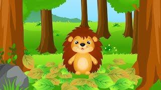 Leśne zwierzęta dla dzieci - bajka edukacyjna po polsku