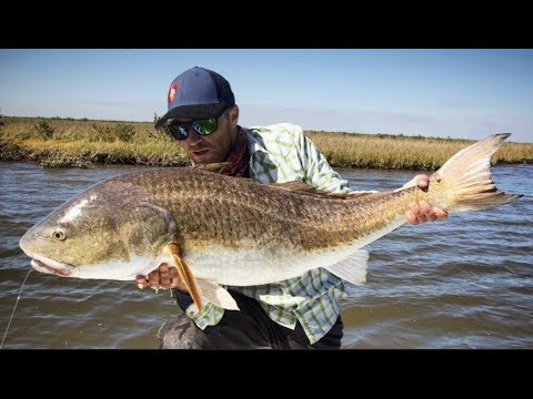 FLY FISHING FOR REDFISH BASICS 101 INTRODUCTION FOR BEGINNERS