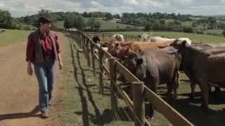 Kate at Oaktree Farm