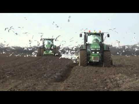 B&C Farming Ltd drilling in Norfolk