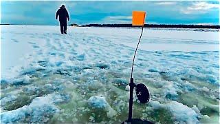 ОГРОМНАЯ ЩУКА НА ЖЕРЛИЦЫ ТАМ ДИНОЗАВР НЕ СЛОМАЙ БАГОР Первый лёд2020 2021