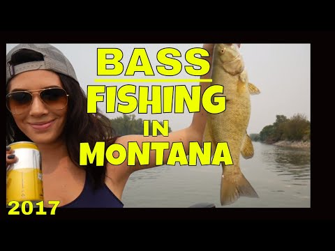 Bass Fishing IN MONTANA- Yellowstone River - 2017