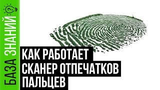 Как работает Сканер Отпечатков Пальцев (Touch Id)   База Знаний