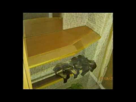 видео: Самодельные полки в прихожей