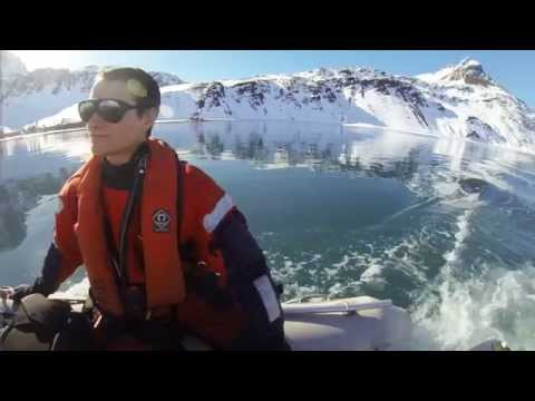 Winter in South Georgia, Antarctica