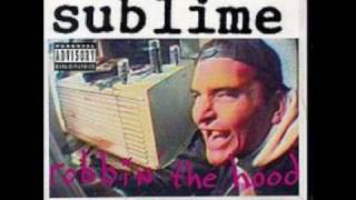 Raleigh Soliloquy Pt. II- Sublime (Robbin' The Hood)-(Explicit)