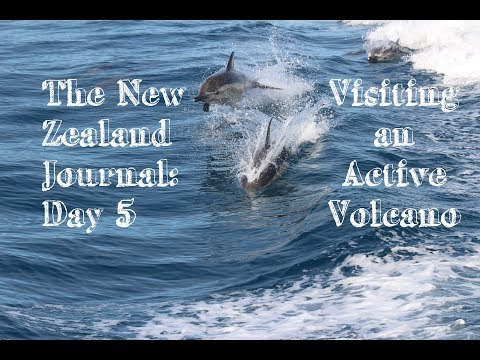 The New Zealand Journal: Day 5 - Visiting an Active Volcano