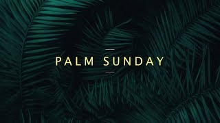 Gambar cover Palm Sunday Live Stream | Roman Catholic Diocese of Quilon