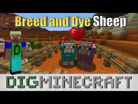 How To Breed And Dye Sheep In Minecraft