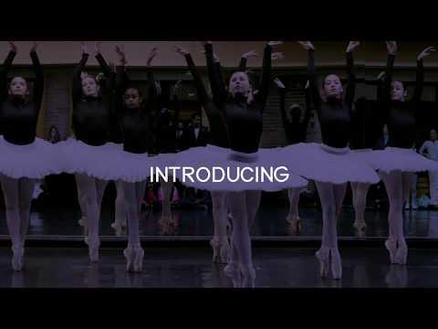 Ballet Detroit's New Logo