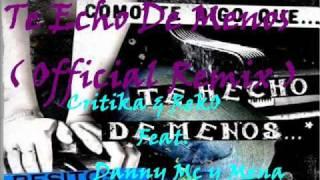 Critika & RekO Feat. Danny Mc y Mena - Te Echo De Menos Remix (Audio)