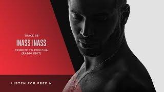 DJ VAN - INASS INASS ( TRIBUTE TO ROUICHA ) RADIO EDIT
