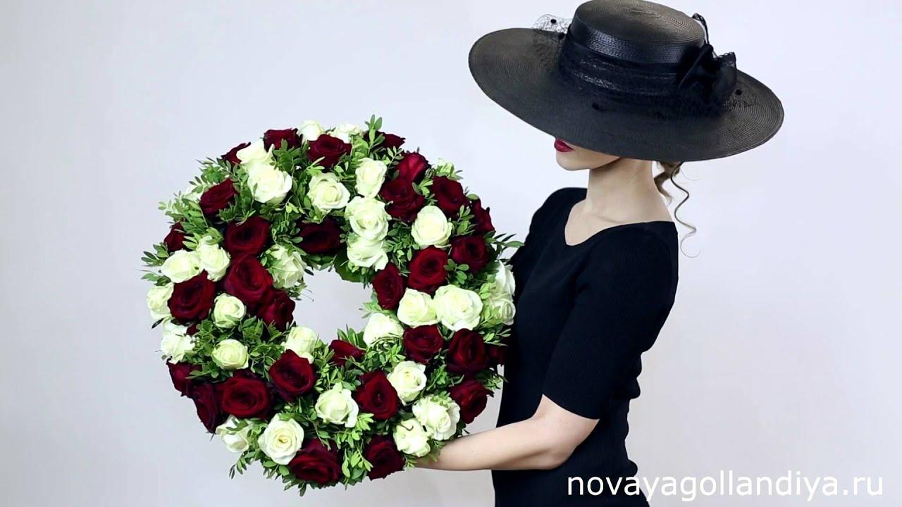 Цветы и фото альтернантера