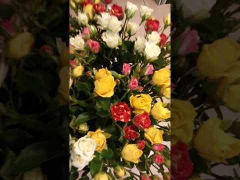 Красивые кустовые розы