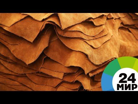 Безотходное производство: в Армении снова заработал кожевенный завод - МИР 24