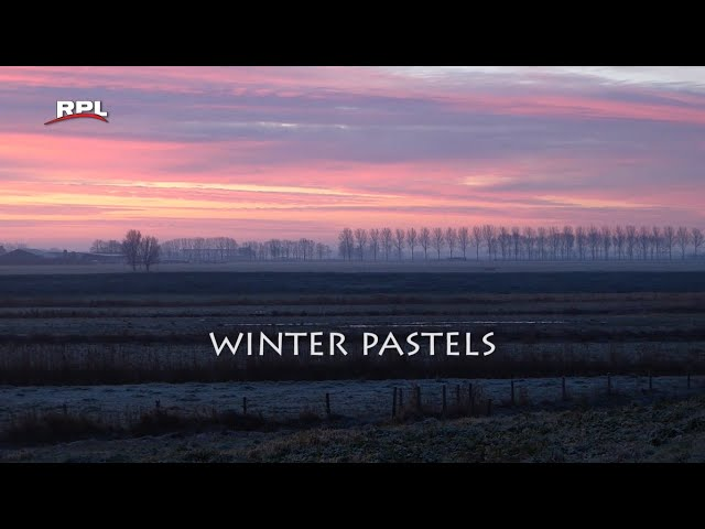 Natuur in de omgeving: Winter pastels