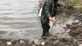Весенняя рыбалка на ОКЕ, весенние трофей/Рыбалка в проводку и на фидер.