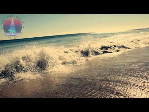 Goldroom - Embrace (Dickystixxx Remix)