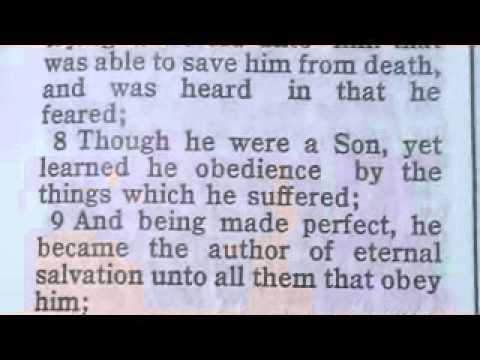 1111 Hebrews 5 Chronological Bible (Christ the High Priest)