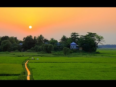 আমাদের গ্রাম (আলীপুর)  An Aerial Video of our Beautiful Village in Bangladesh. DJI Phantom 3 👍🚁✌😁