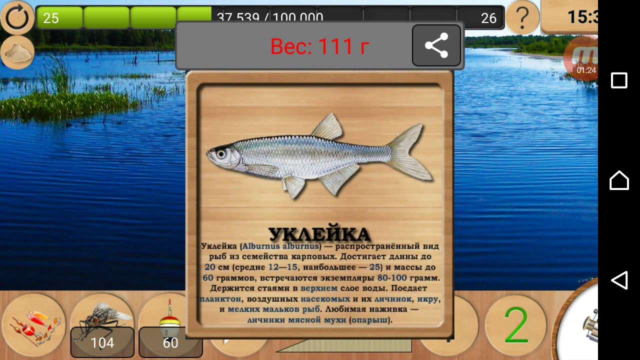 На что клюет уклейка в реальной рыбалке