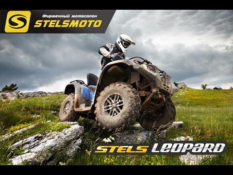КВАДРОЦИКЛЫ STELS ATV 600/650 LEOPARD