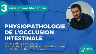 Download Physiopathologie de l'occlusion intestinale   Dr Malik ZEBOUCHI