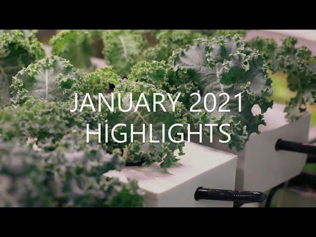 January 2021 Highlights