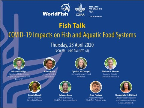 Fish Talk: Covid 19 Impacts On Fish And Aquatic Food Systems