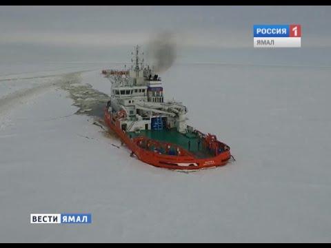 «Асимметричный» ледокол Балтика.